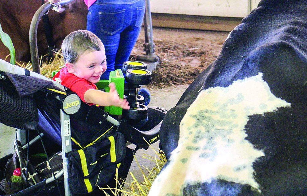 Fonda Fair brings tradition, memories