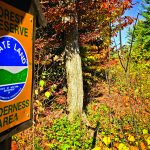 Measure would cut red tape on  NY lands deemed 'forever wild'